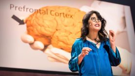 The brain-changing benefits of exercise | Wendy Suzuki